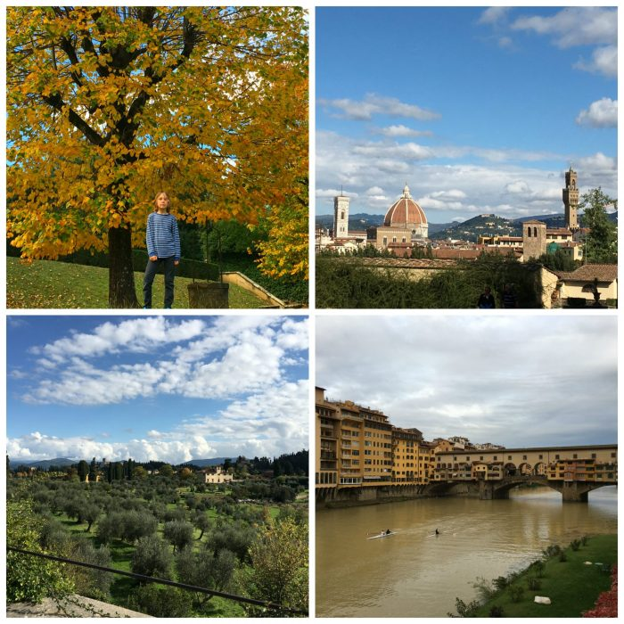 Florence, Italy (Firenze) Boboli Gardens, Tuscany, olive trees, Arno, Ponte Vecchio