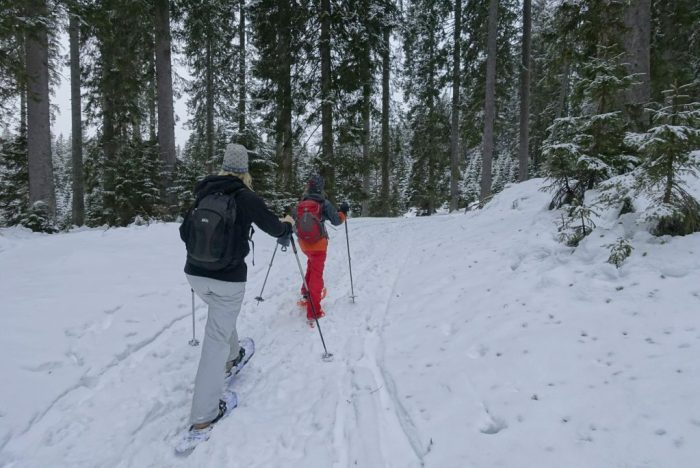 Best place to snowshoe lake bled