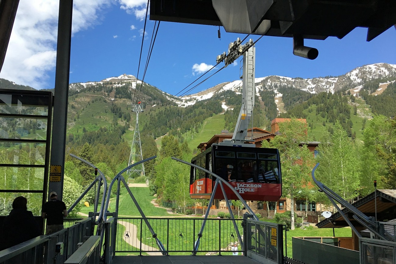 Things to do in Jackson Hole, Wyoming - TravelingMel