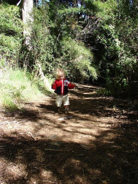 And he's hiking again.