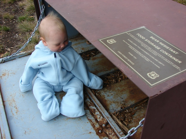 Baby in a bear box