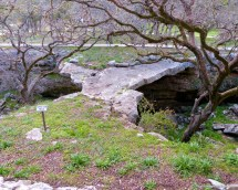 Texas Hill Country - Little Treasure