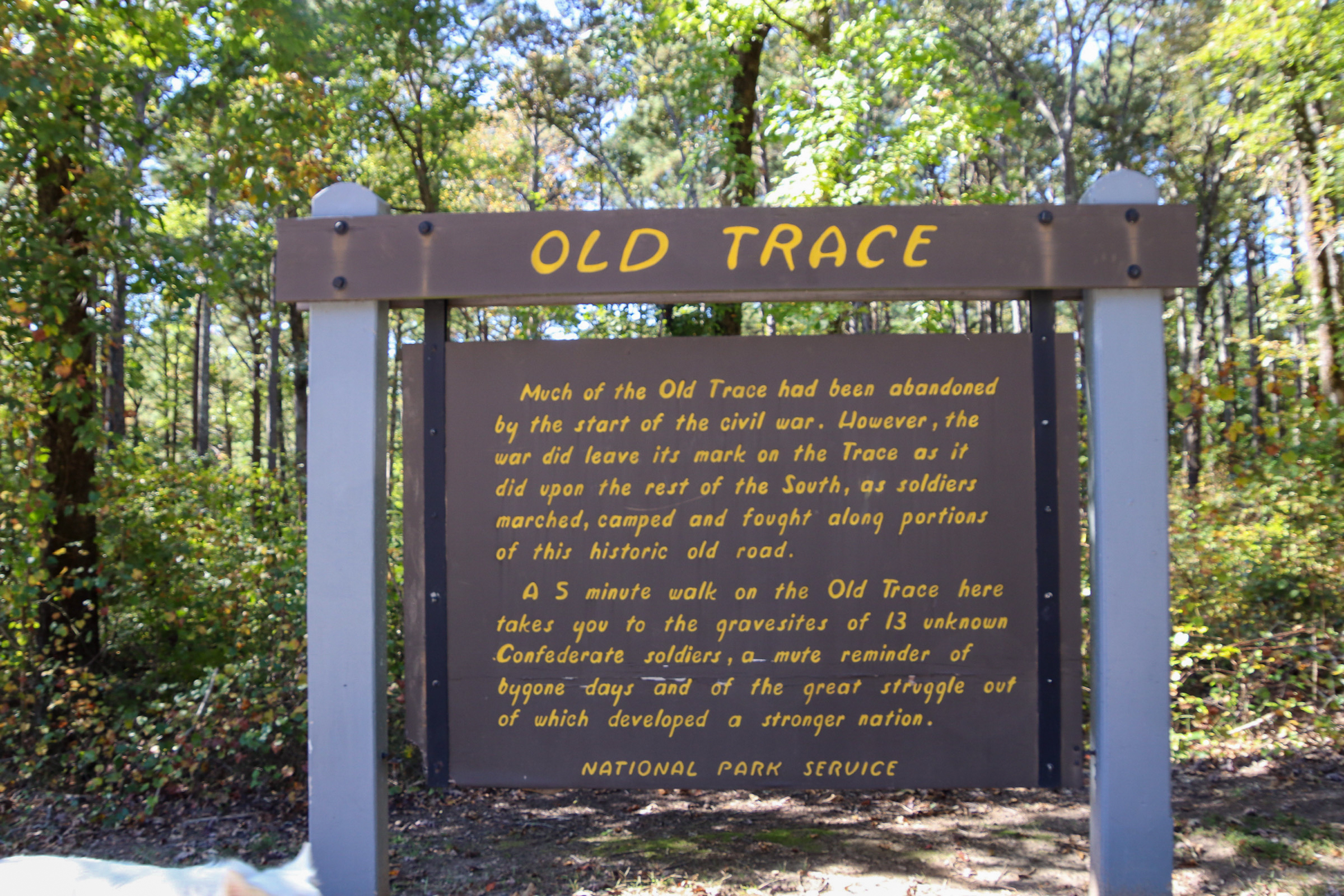 Old Trace and Confederate Graves along the Natchez Trace Parkway