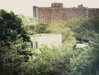 View from the High Line, New York. Photo: TravelingReporter.com