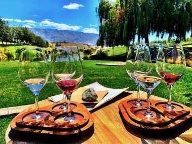 Wine Tasting at Cloudy Bay Vineyard
