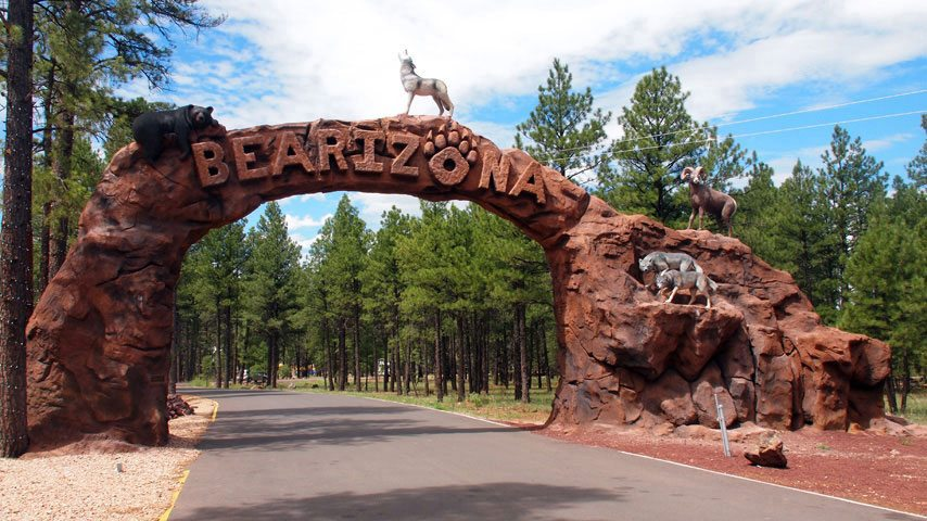 Visit Bearizona from Williams, one of the best small towns in Arizona
