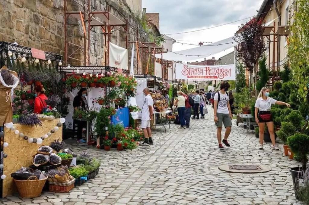 Strada Potaissa outdoor flower market in Cluj Napoca, Romania
