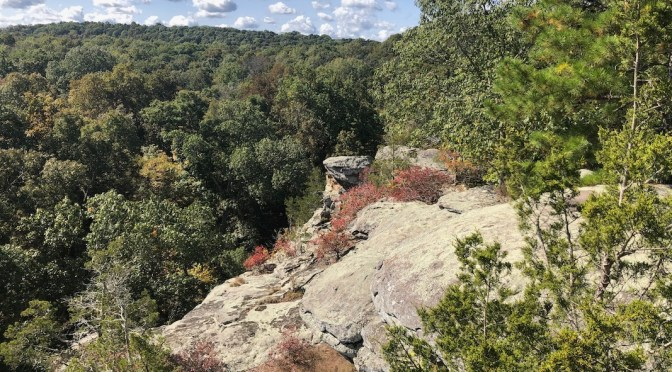 Shawnee National Forest  Illinois