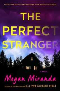 the-perfect-stranger