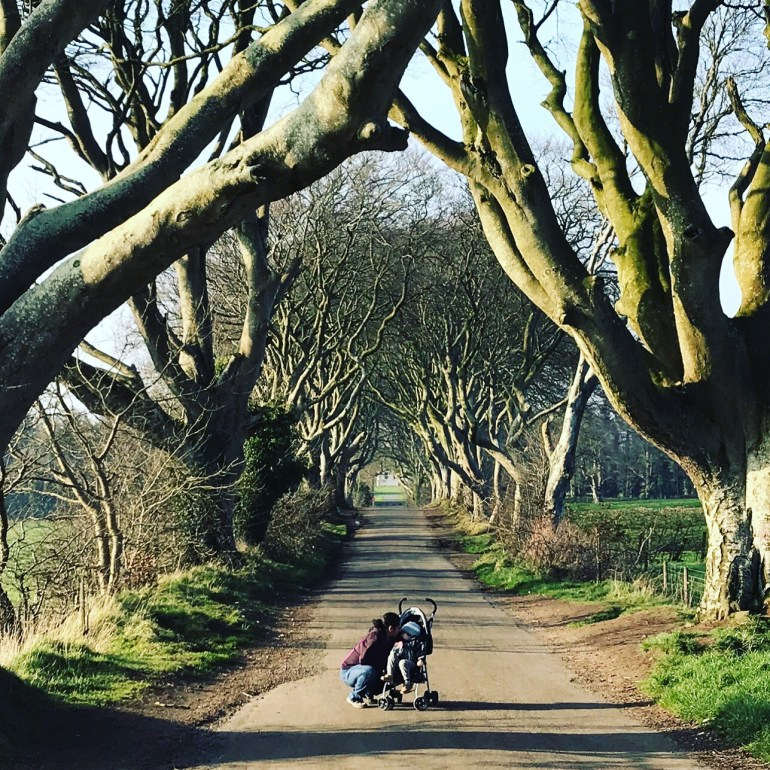 Toddler in stroller along Bregagh Rd., at the Dark Hedges