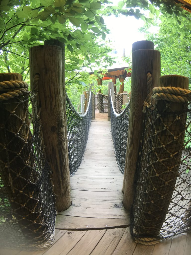 Rope Bridge at the Tree House Exhibit at the Frederic Meijer Gardens and Sculpture Park