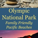 Visiting the Pacific Beaches of Olympic National Park Pinterest Image