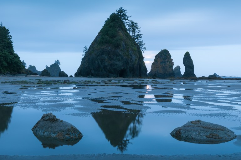 Sea stacks and their reflections in still, blue water, on Shi Shi Beach in Olympic National Park.