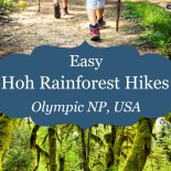 Hall of Mosses trail photo with children hiking, and text overlay