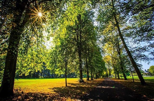Things to do in Newcastle leazes park