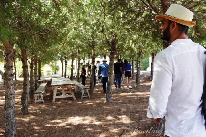 209 Lebanese Wine Batroun Tour Aurora