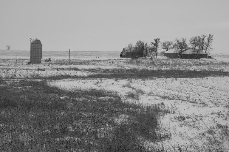 farm-boys-2-7794