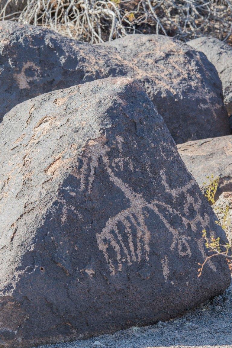 Painted Rock Petroglyph-2809