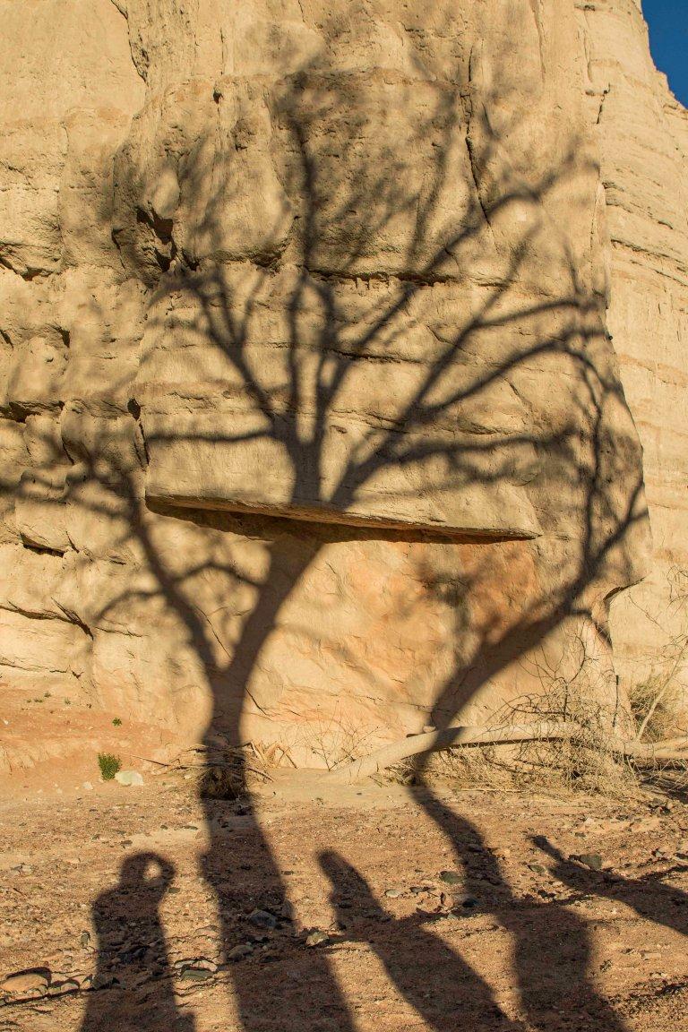 Around Taos Part 2-7771