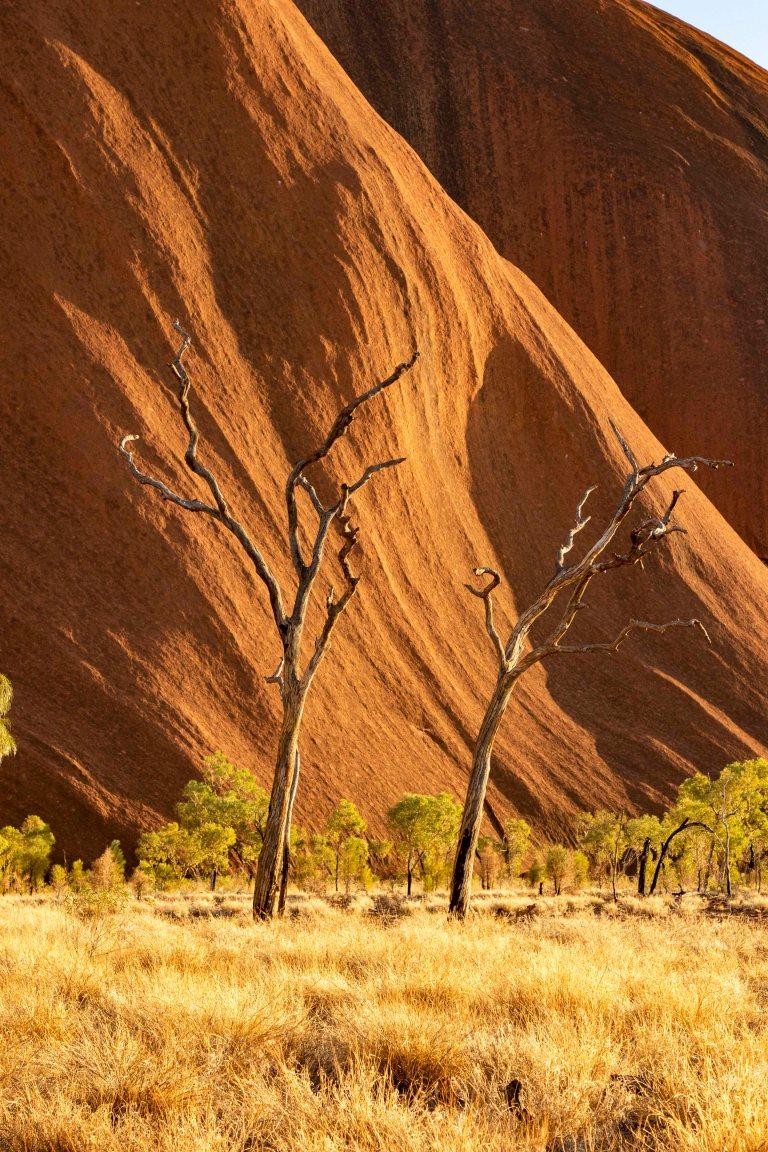 Uluru-5947