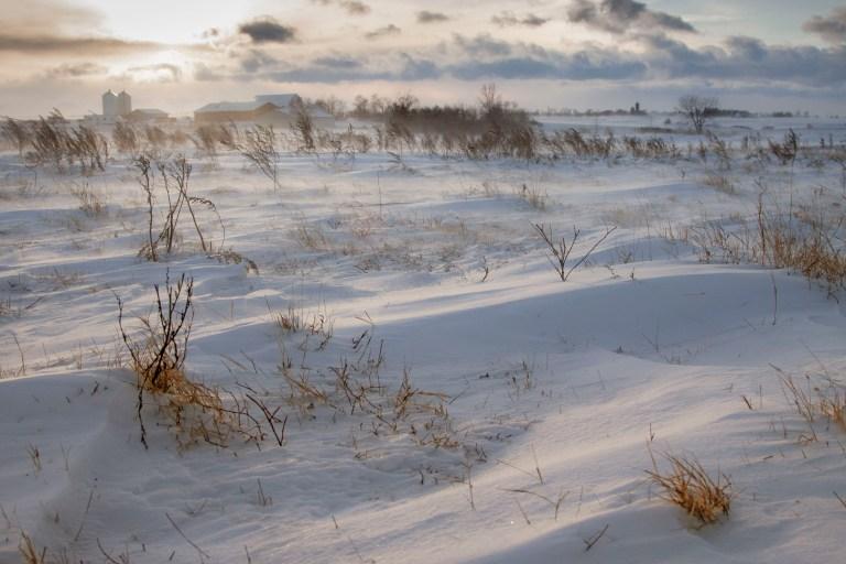 Winter-7975
