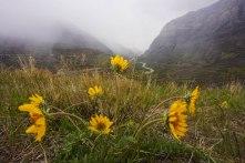 Mule's Ear Provo Canyon