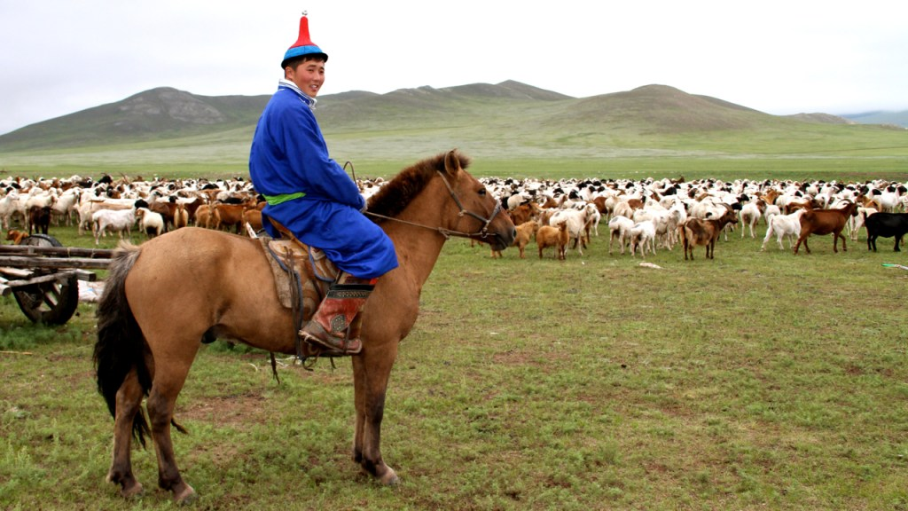 traveling mongolia best and worst