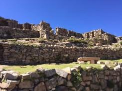 The ruines