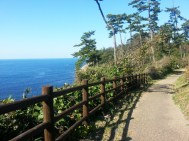 Tojinbo Nature Forest walking trail