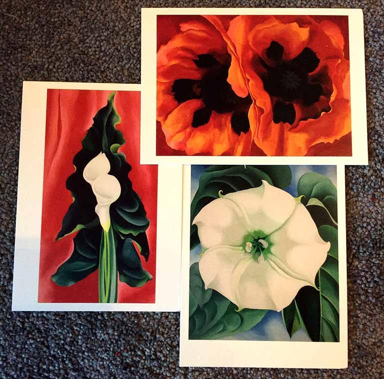 Just some of O'Keeffe's famous flower paintings on display at London Tate Modern's Exhibition of her work; from a travel blog by www.traveljunkiegirl.com