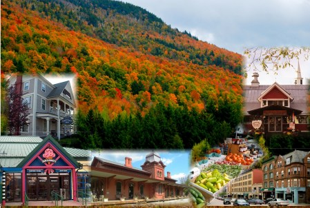 Waterbury Fall Collage
