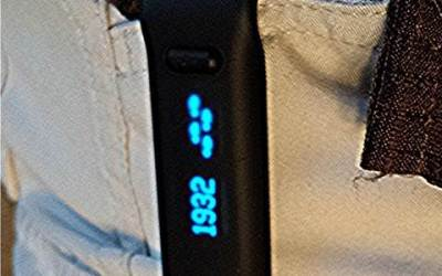 Fitbit Electronic Pedometer