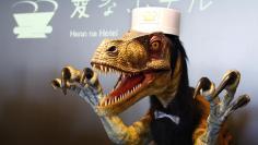 Photo: T Rex Robot at Henn na Hotel, Japan