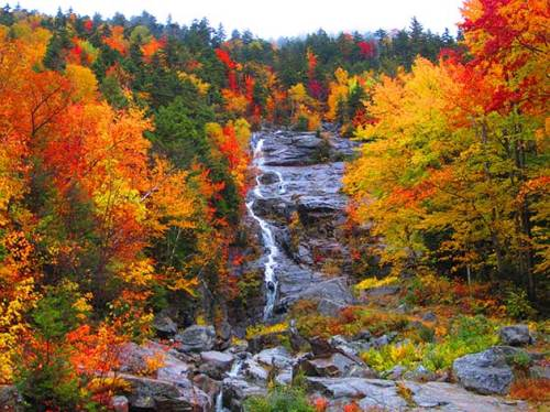 White Mountain National Forest, New Hampshire via @TravelLatte.net