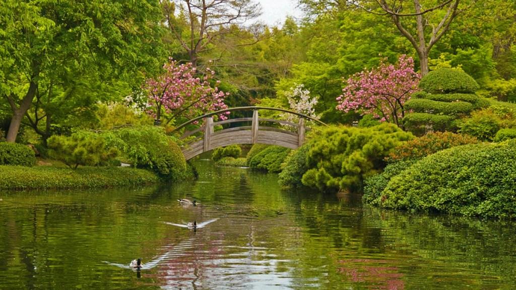 Spring Festivals in Texas - Ft Worth Botanic Garden Japanese Festival