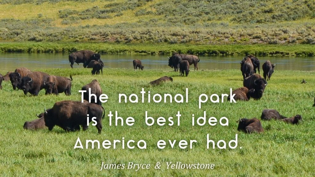 How to Visit America's National Parks - Bryce & Yellowstone on TravelLatte