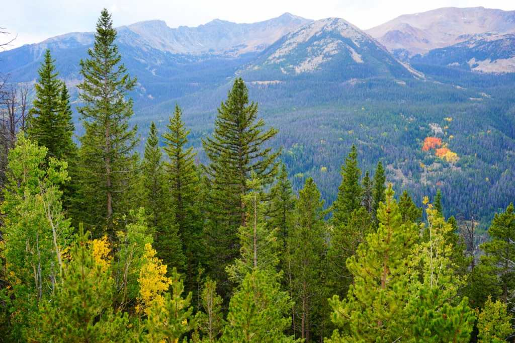 Daytrips from Denver: Rocky Mountain National Park