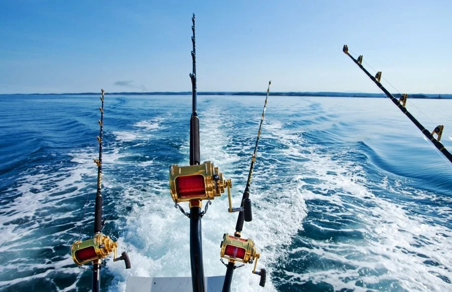 View of fishing rods attached to a boat