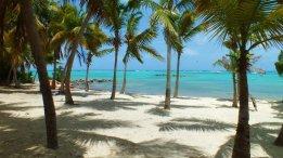 Guadeloupe - Kite (20)