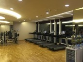 Cardio zone in the gym