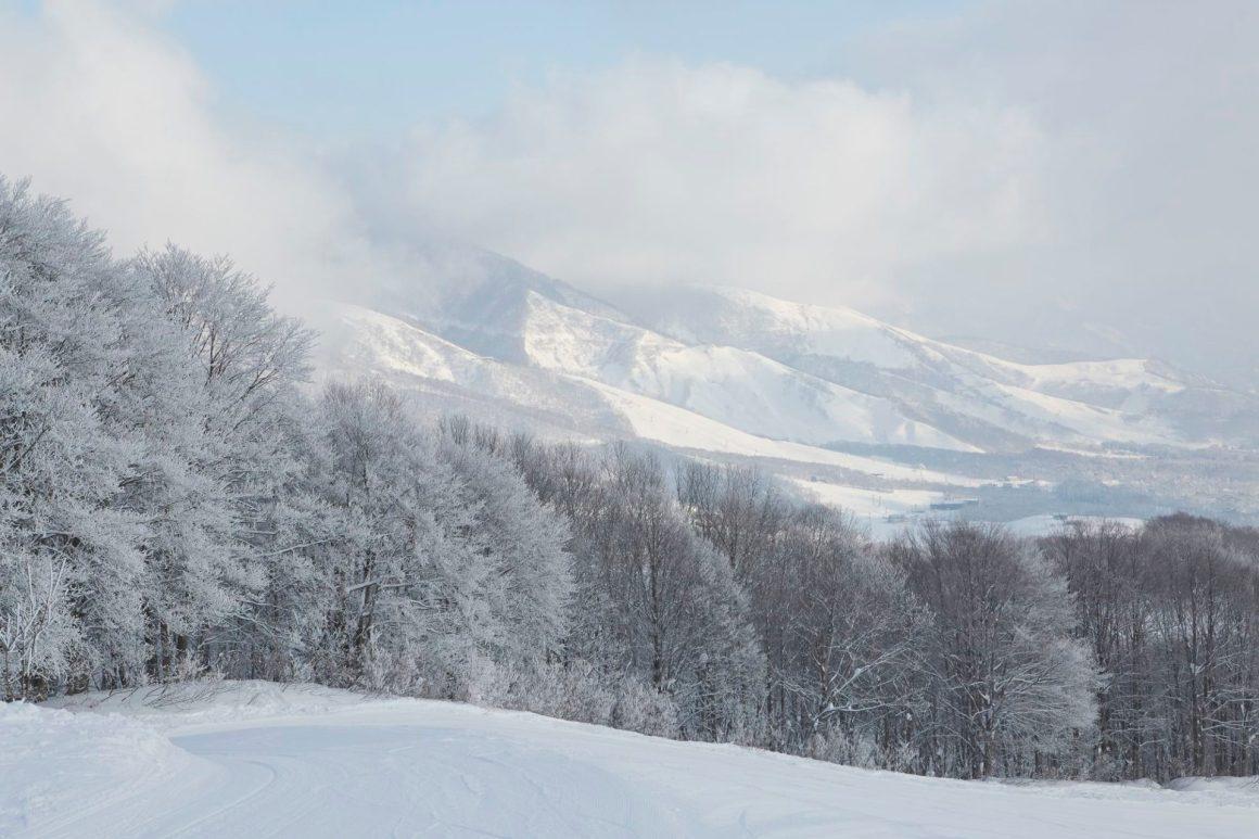 Winterlandschap in Nagano in Japan