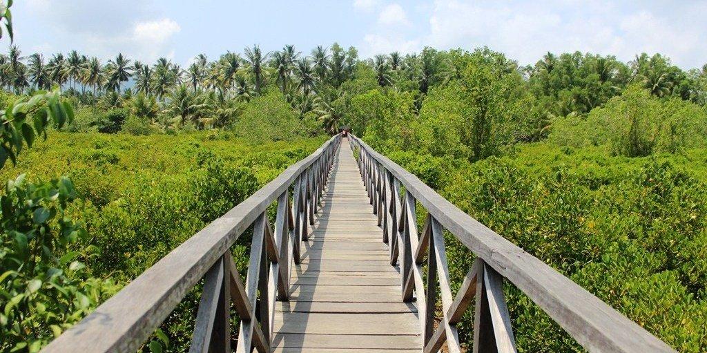Hutan Mangrove Cengkrong dan Eksotisme Teluk Prigi Trenggalek 1