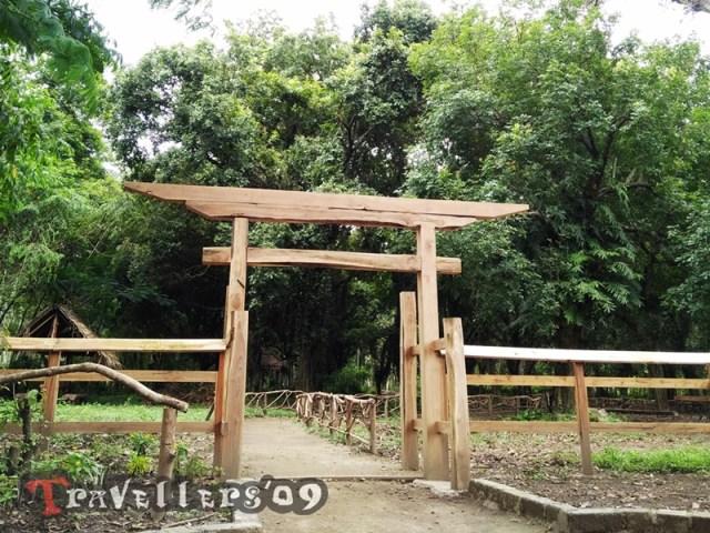 kesambi trees park
