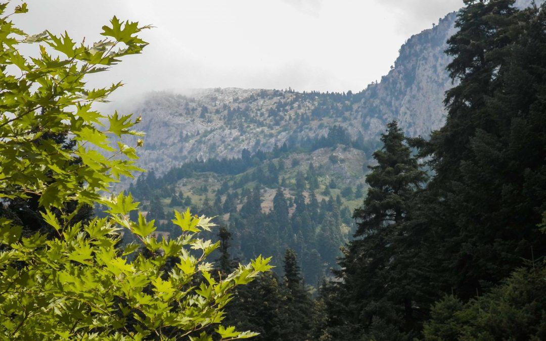 Πεζοπορία στις μοναδικές πλαγιές του Κόζιακα: Κόκκινος βράχος και Αγία Τριάδα (Ν.Τρικάλων)