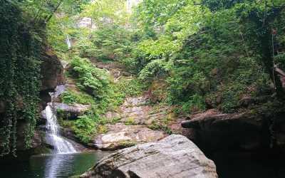 Το Φαράγγι της Καλυψώς: ένας μικρός επίγειος παράδεισος (Ν. Λαρίσης)
