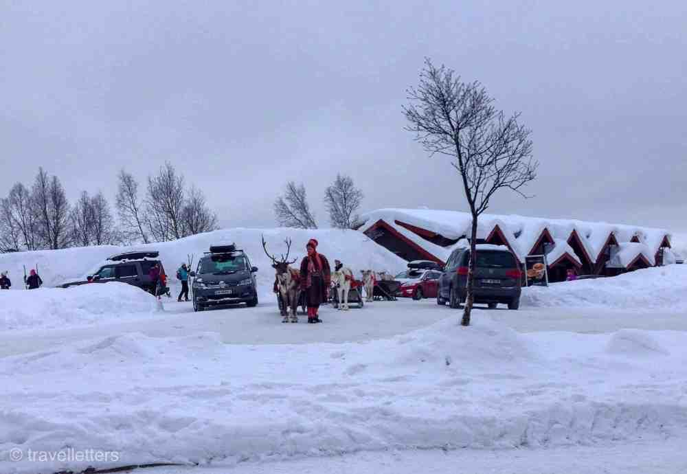 Reinsdyrkøring med samen Isak Reinsdyrkjøring, Beitostølen, Valdres, 5 ting å gjøre på Beitostølen på vinteren uten ski på beina