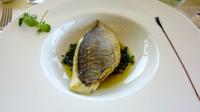 Sea bream with tomato and basil salsa