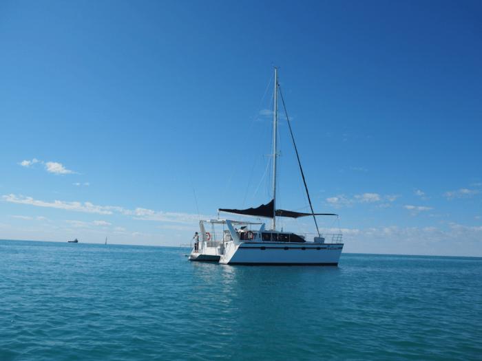 Snubfin dolphins tour