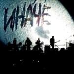 Иначе с ДДТ! Концерт легендарной группы в Киеве