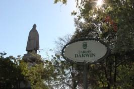 Darwin's Garden